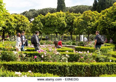Garden Of The Ancients by Domus Tiberiana Palatine Hill Forum Rome Italy
