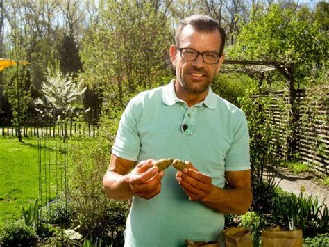 uschi natur im garten natur im garten neue folgen ab 23 4 2017 forsythie