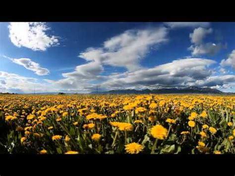 Imagenes Impresionantes De La Naturaleza | impresionantes imagenes de la naturaleza en formato 4k