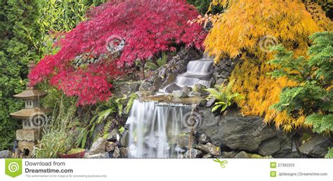 Backyard Landscaping Plans by Backyard Waterfall With Japanese Maple Trees Fall Stock