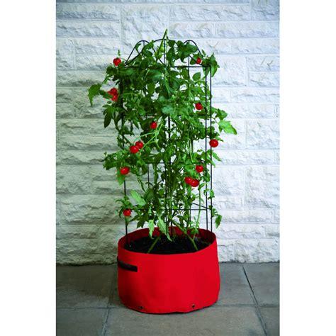 Patio House Sac 224 Plantation Sp 233 Cial Tomates Avec Son Tuteur De Jardin