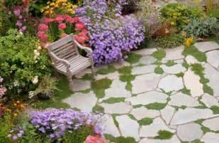 Garden Patio Images by Water Saving Grass Alternatives Fivestar Landscape
