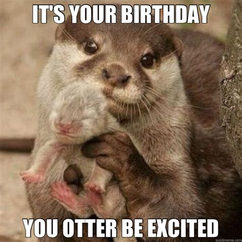 Otter Meme - it s your birthday you otter be excited misc quickmeme