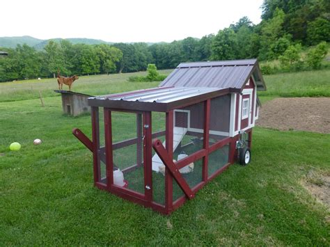 backyard chicken tractor my new chicken tractor backyard chickens