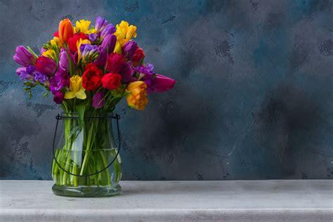 fiori di marzo piante e fiori di marzo livingcorriere
