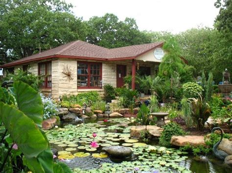 Hill Country Gardens by Who To Choose For A Water Garden Or Koi Pond