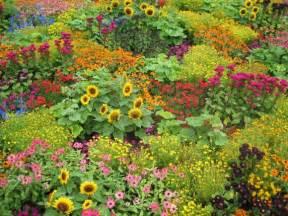 Garden Flower Gardens 171 Extension Master Gardener