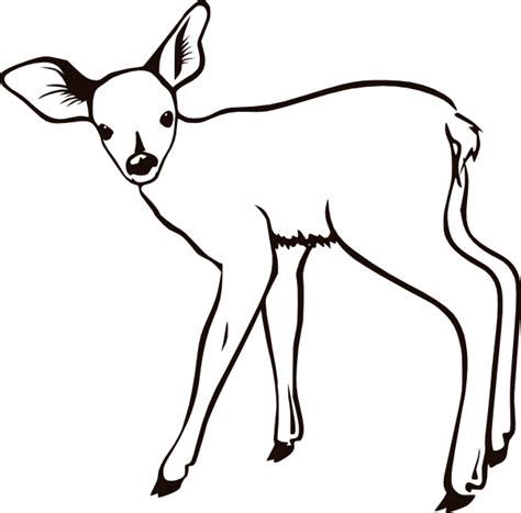 coloring now 187 blog archive 187 deer coloring page