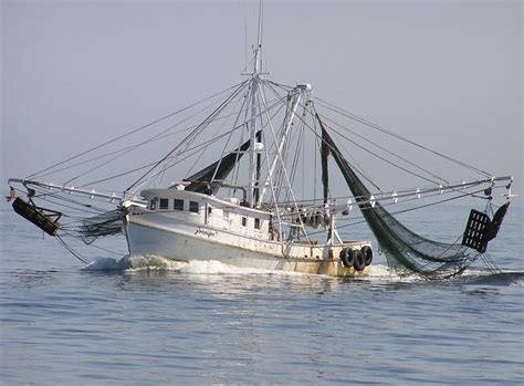 boats for sale in belhaven nc new calendar check could be needed for shrimp seasons