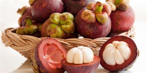 Obat Herbal Putih Untuk Diabetes manfaat kulit buah manggis untuk kelenjar getah bening