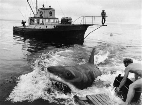 jaws bigger than boat jaws according to writer carl gottlieb the line quot you re