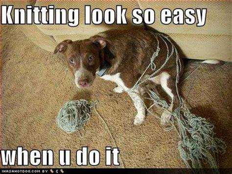 stricken lustig knitting look so easy when u do it strick stricken
