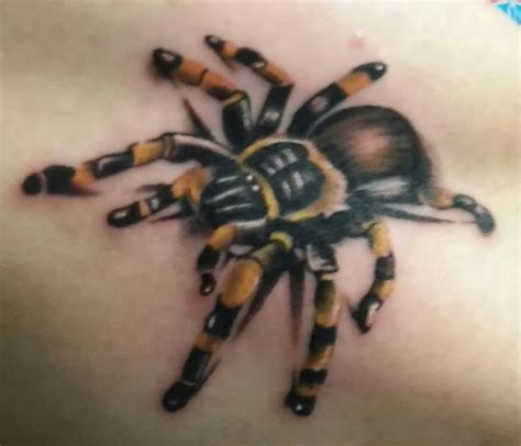 tattoo 3d vogelspinne tarantula tattoo by twiggy at explicit tattoo fullerton ca