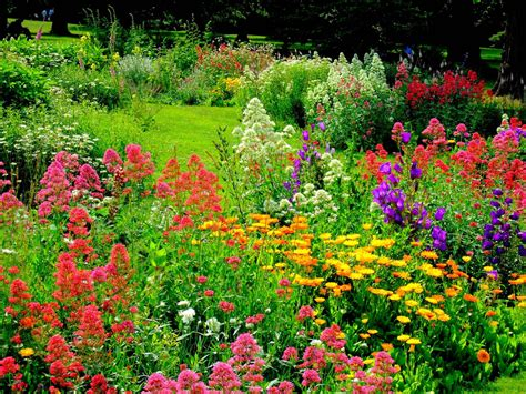 Photos Flowers Gardens Georgian Style Flower Garden At Osterley Park Flickr