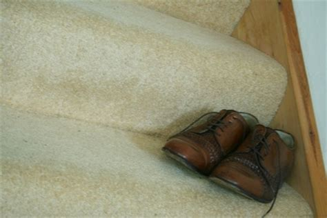 How To Get Musty Smell Out Of Leather by How To Get Mold Mildew Clothes Shoes Ehow