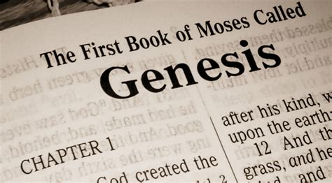 my book of genesis books the book of genesis 3 wes white born to win
