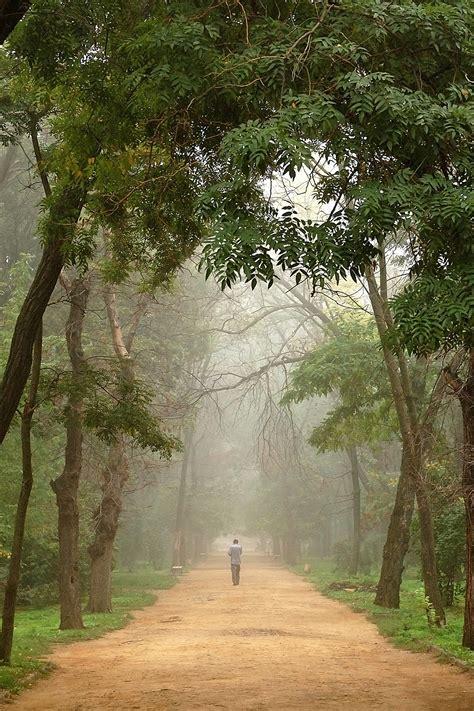 wooded path central florida sierra club
