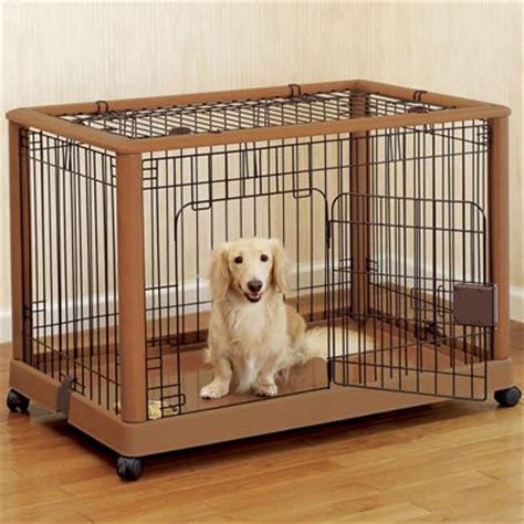 crate a puppy overnight crate easy tips obedience