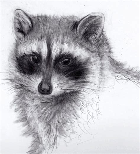 drawing and painting animals 178221321x animals pencil drawings bing images art animal pencil drawings drawings and