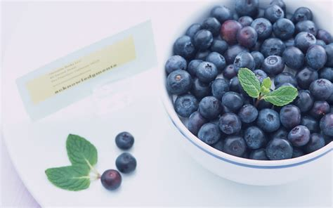 blueberry wallpaper blueberry full hd wallpaper and background 2560x1600