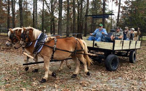 boat dealers in pineville la horse boot dealer news and tips easycare