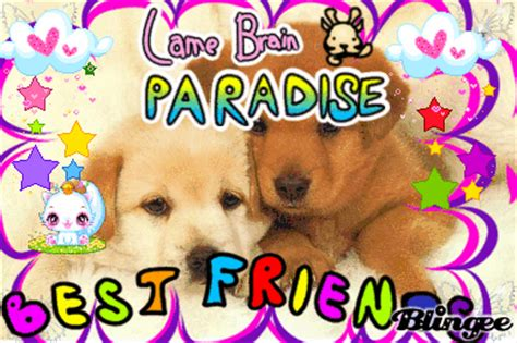 best friend puppies best friend puppies paradise picture 110150222 blingee