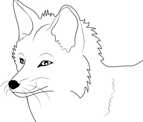 coloring page of a fox face fox coloring pages free printable