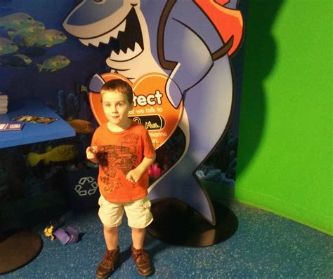 Kaos Awesome Animal 13 Tx Oceanseven everything is awesome at legoland discovery center in grapevine tx