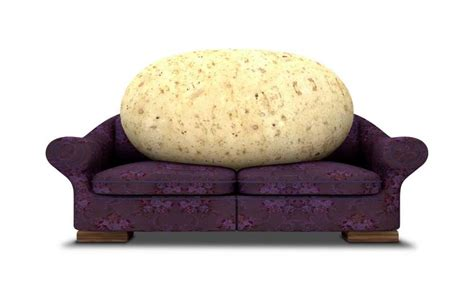 couch potat couch potato investing disappointing but above average