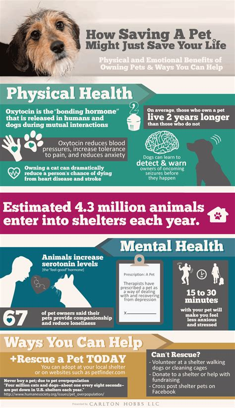 7 Benefits Of Owning A Pet by Mental Health Benefits Of Owning A Pet Infographic