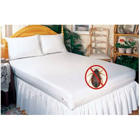 does renters insurance cover bed bugs bed bug mattress covers mattress covers for bed bugs
