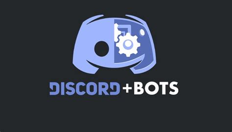 discord verification bot 7 useful discord bots to enhance your server beebom