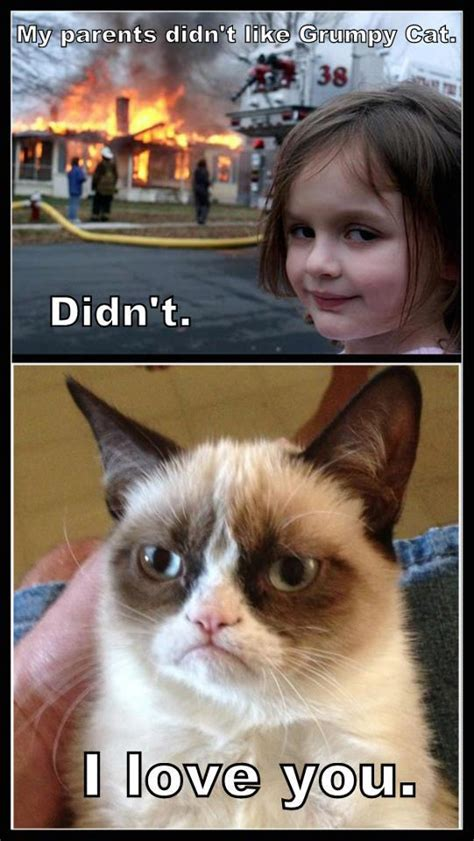 Funny I Like You Memes - grumpy cat part 2 funny grumpy cat memes