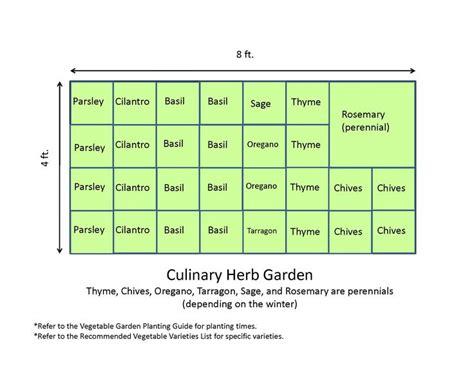 herb garden layout ideas 4x8 herb garden garden layout template