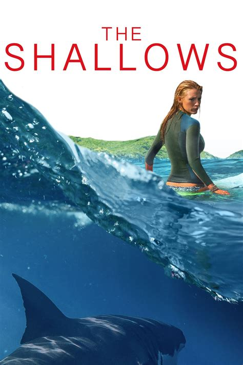 the shallows theshallows blakelively lively 82 shallow and
