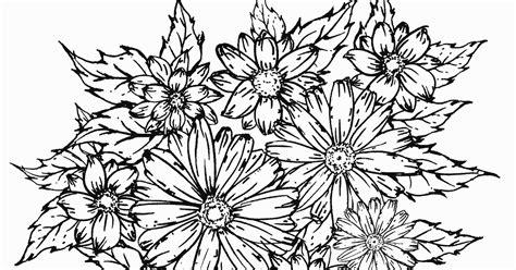 mewarnai rangkaian bunga krisan contoh gambar mewarnai