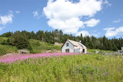 Meadow Ridge Cottages by Free Images Landscape Grass Wilderness Farm Meadow
