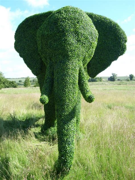 elephant topiary brangelina elephants and gardening what more could we want