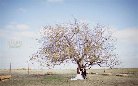 wedding venues denton tx outdoor wedding venues in denton mini bridal