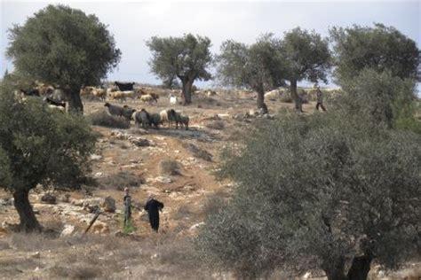 israel en route  bethlehem  rachel  ruth liz