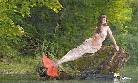 Natur E illustration gratuite sir 232 nes nature eau