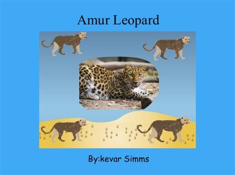 leopard s blood a leopard novel books quot amur leopard quot free books children s stories