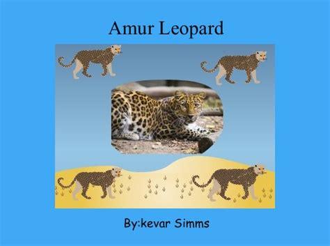 quot amur leopard quot free books children s stories