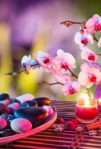 Lotus Flower Background - wallpaper hd iphone zen attitude free download