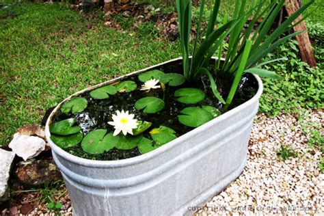 simple backyard ponds 10 easy steps to create a simple backyard pond with children