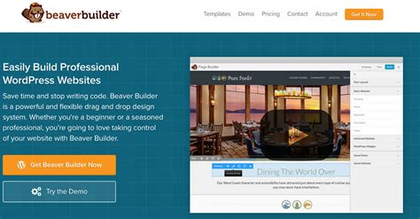 themes compatible with beaver builder what s the best drag and drop wordpress builder