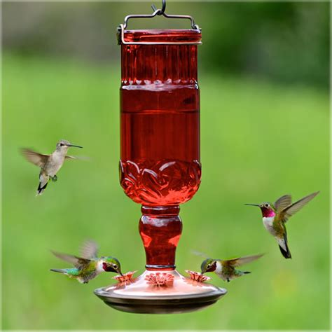duncraft com red antique bottle hummingbird feeder