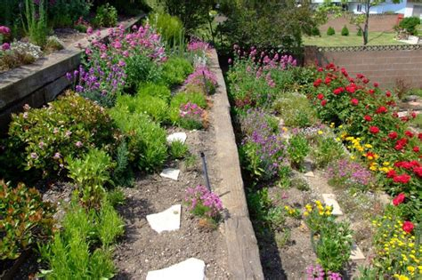 tiered flower gardens on pinterest evergreen shrubs raised garden beds and buxus