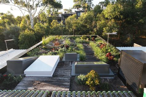 sikas green roof waterproofing membrane protects award winning forest lodge eco house sika