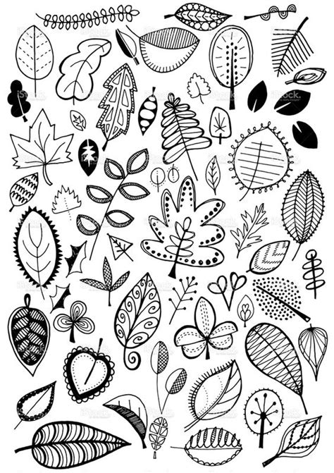 doodle drawing illustrator doodle leaves vector illustration tangle accents
